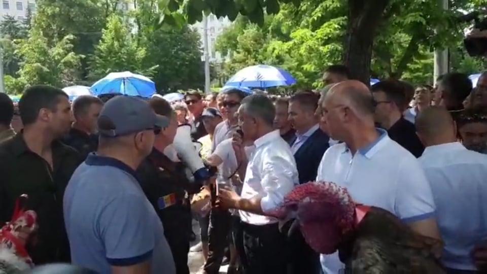 Протест ДПМ завершился. Что сделали с индюками?